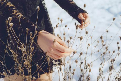 winter,flowers,hands,snow-f1ffd880b0a8138fcfbbd5de17fedeba_h